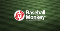 Up To 75% OFF On Clearance Items At Baseball Monkey
