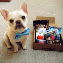 Sign Up For Updates From BarkBox